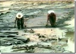 Pemasangan Tensar Geogrid di rawa